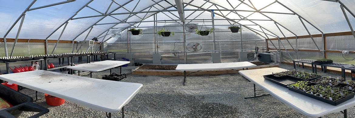 Image of inside of Jefferson greenhouse with tables set up and some starter plants on one table.